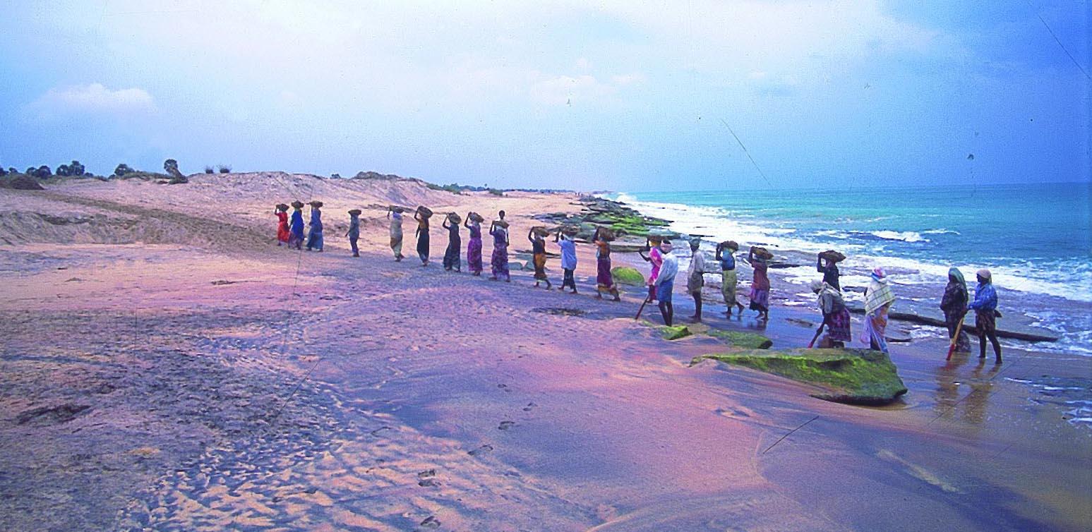 beachmine3